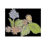 国産生蜂蜜の通販サイト・ハニープラント|秋採り