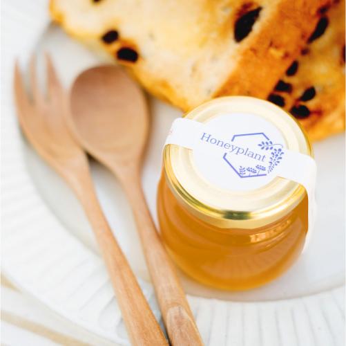 国産はちみつの通販サイト・ハニープラントの国産蜂蜜 商品開発へのこだわり POINT3