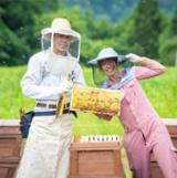 国産蜂蜜の通販サイト・ハニープラントの地域を知る