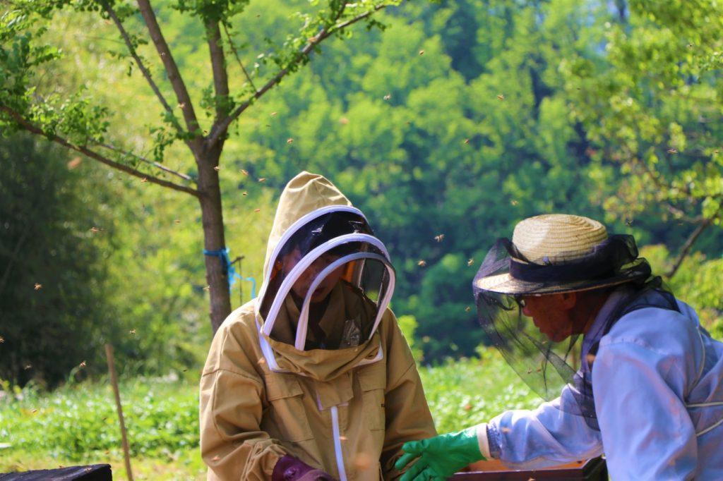 「信州立科産リンゴはちみつ」の養蜂家、飯島さんのお手伝いに行ってきました!